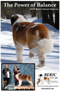 NESBC Beric Ad_2015