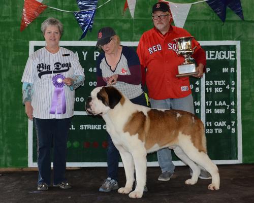 nesbc-winners-dog-beric-tonk